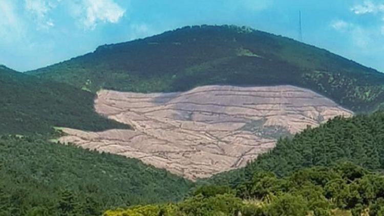 Çanakkale'de çevre talanına hayır!