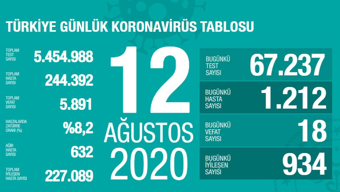 Sağlık Bakanlığı Türkiye'de Tespit Edilen Koronavirüs Olgu Sayısının 244.392'ye Yükseldiğini Açıkladı
