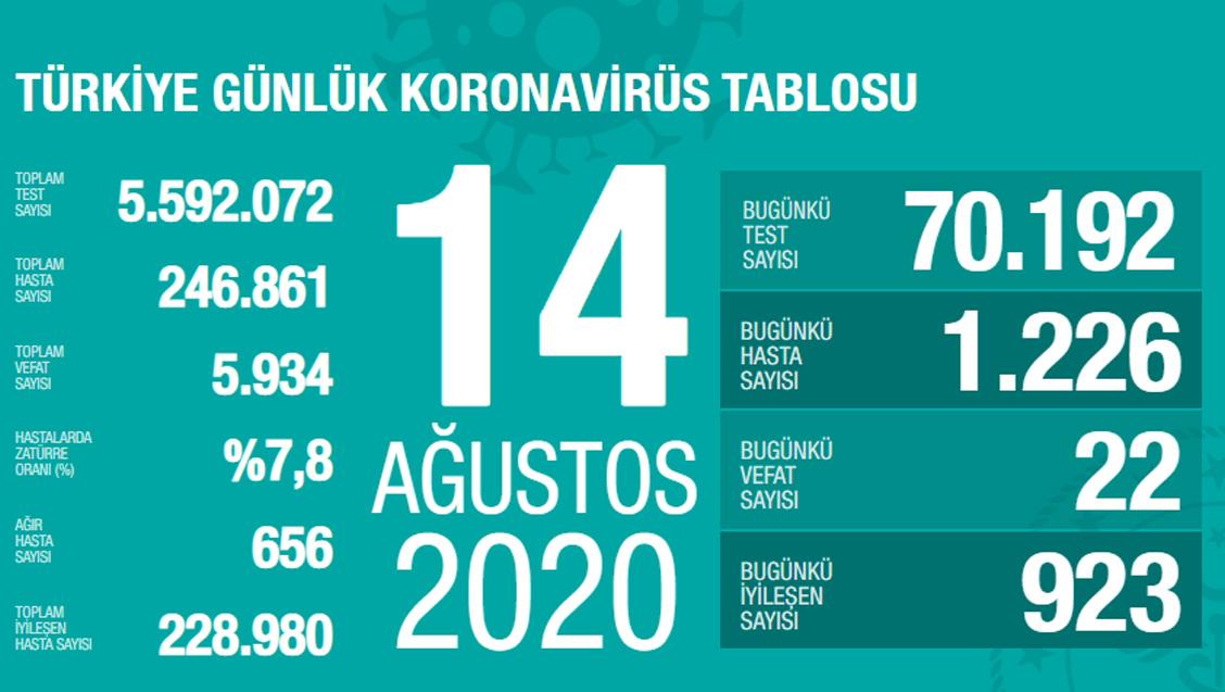 Sağlık Bakanlığı Türkiye'de Tespit Edilen Koronavirüs Olgu Sayısının 246.861'e Yükseldiğini Açıkladı