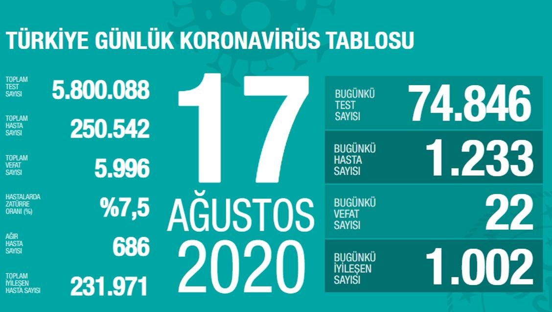 Sağlık Bakanlığı Türkiye'de Tespit Edilen Koronavirüs Olgu Sayısının 250.542'ye Yükseldiğini Açıkladı