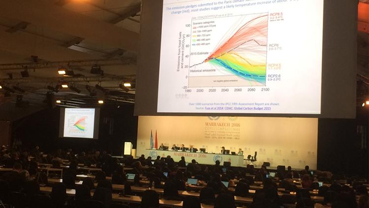 TTB, COP22'ye Gözlemci Olarak Katıldı